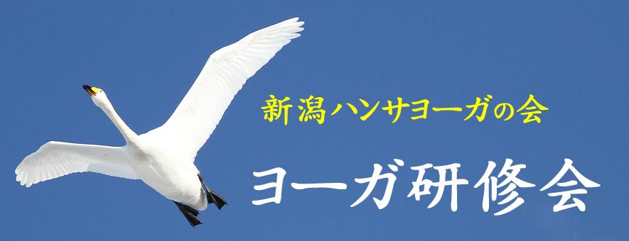 新潟ハンサヨーガの会.jpgのコピー